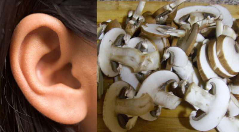 Alimentos Parecidos com os Orgãos que Curam - cogumelos e ouvidos