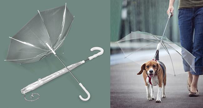 As invenções mais loucas do mundo - guarda-chuva para cães