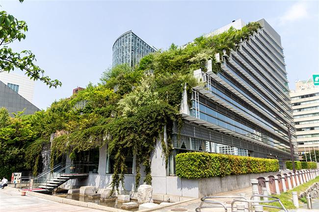 Jardins verticais dignos dos céus - ACROS Fukuoka, Fukuoka, Japão