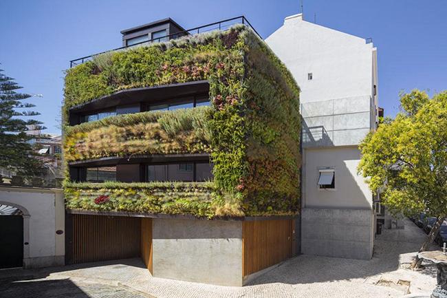 Jardins verticais dignos dos céus - Casa Patrocínio, Lisboa, Portugal