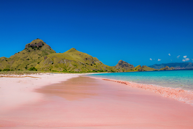 Ilha de Komodo, Indonésia - 11 das ilhas mais bonitas do Mundo