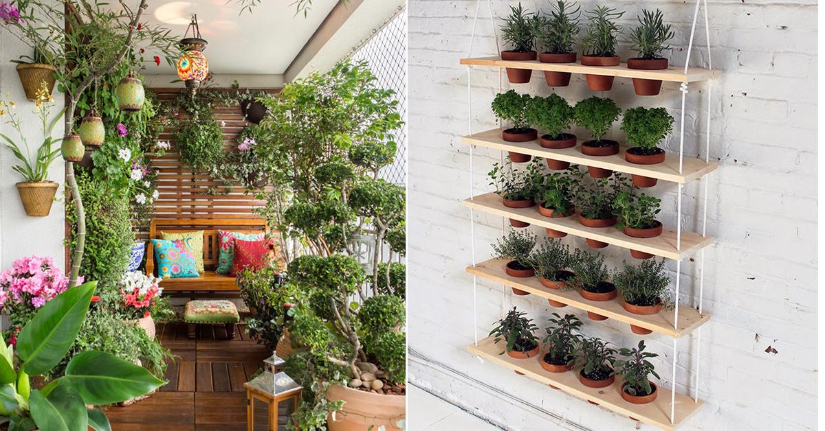Ervas aromáticas e jardins em casa  11 dicas geniais  Like3ZA