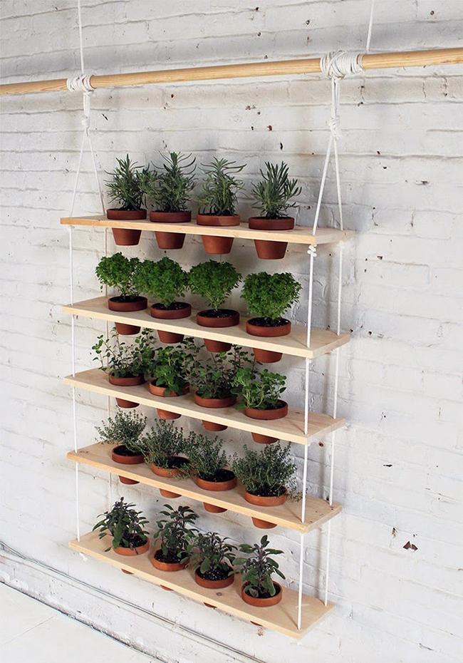 ervas aromáticas, fazer um jardim suspenso