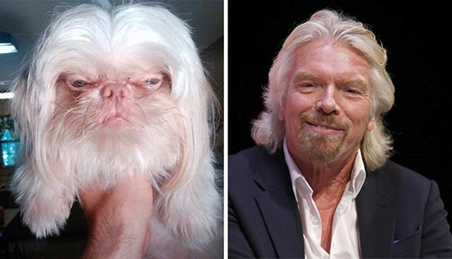 Celebridades que têm um animal parecido com elas - Richard Branson