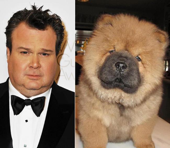 Celebridades que têm um animal parecido com elas - Eric Stonestreet
