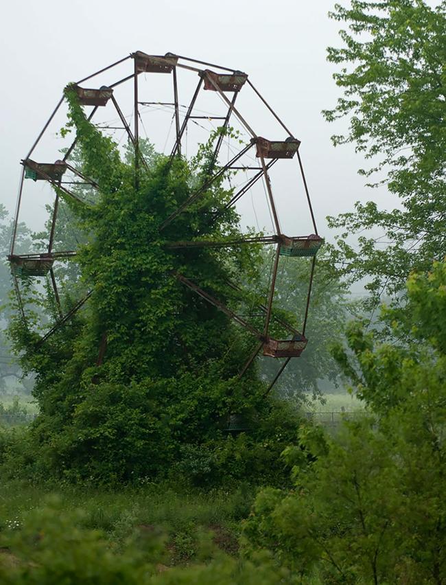 Quando a natureza reclama o seu lugar - roda gigante abandonada