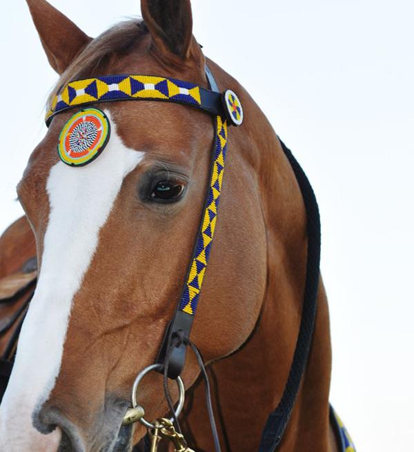 Missangas - armadura de cavalo