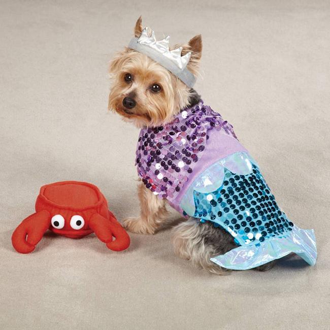 Fatos divertidos para cães - Pequena Sereia