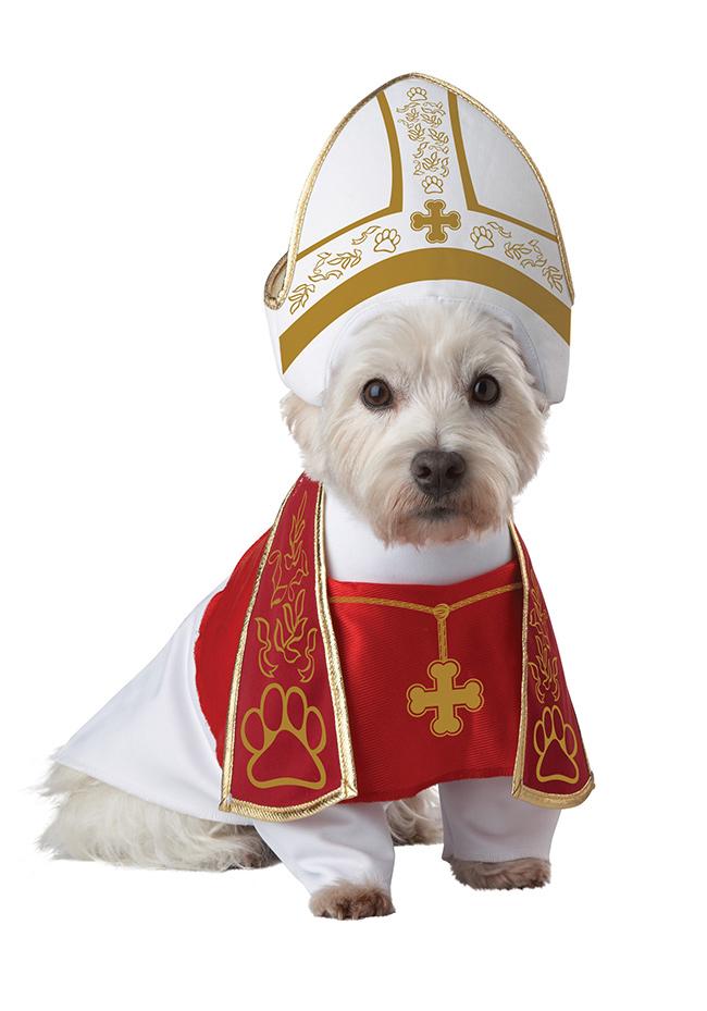 Fatos divertidos para cães - arcebispo