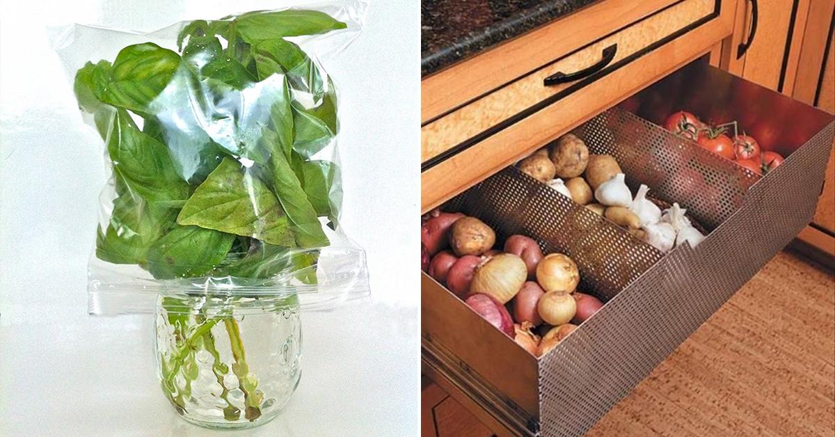 9 truques infalíveis para conservar legumes e vegetais