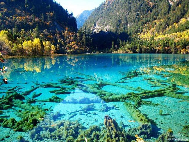 As águas mais cristalinas - 10 locais de sonho - Five Flower Lake, China