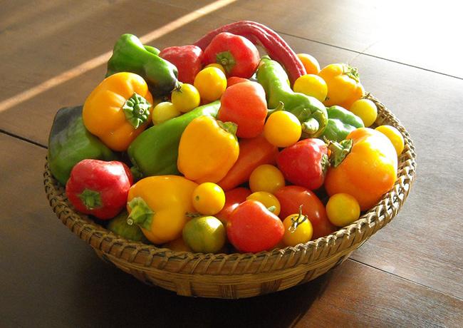 Frutos e vegetais que ajudam a manter a pele bronzeada - Pimentos verdes, amarelos e vermelhos
