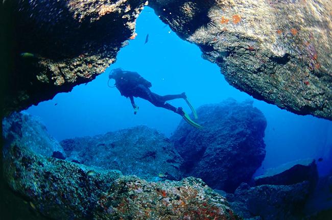 1B-lugares-fantasticos-para-fazer-mergulho-em-Portugal-Ocean-Revival-