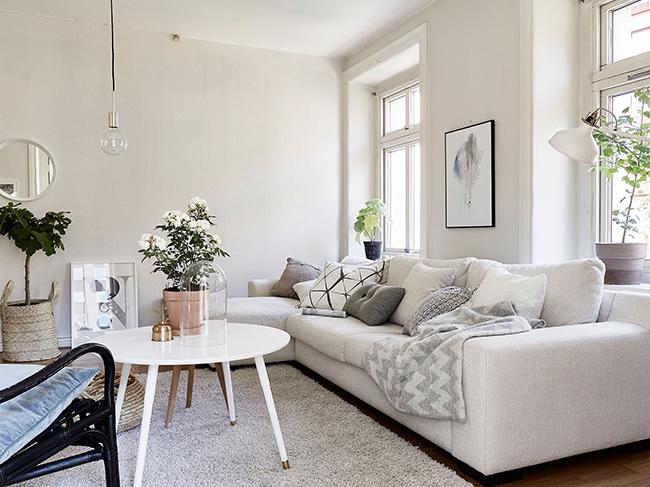 Ideias para a casa ficar mais fresca - tenha plantas em casa