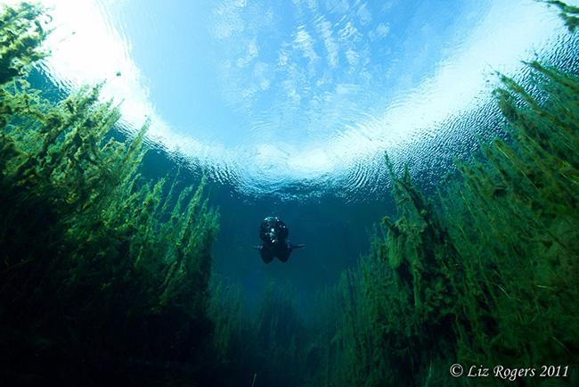 As águas mais cristalinas - 10 locais de sonho - Piccaninnie Ponds, Austrália