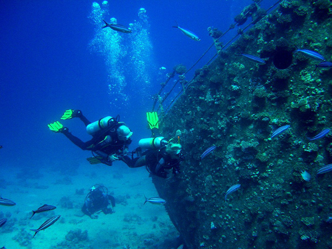 Lugares fantásticos para fazer mergulho em Portugal - Portinho da Arrábida