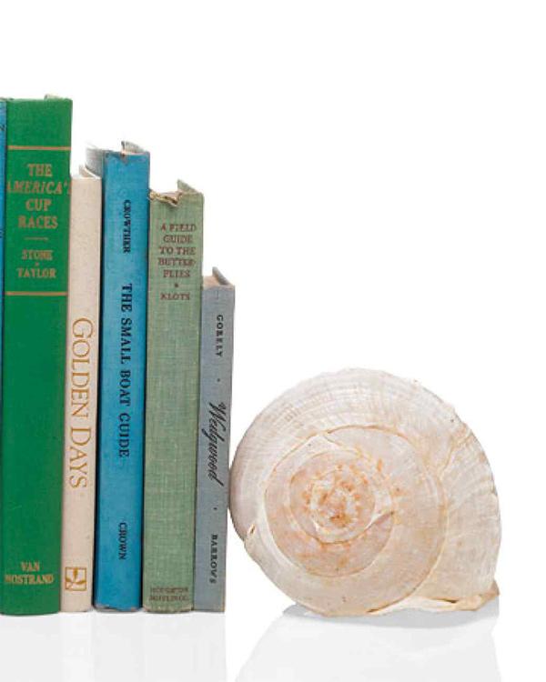 Decoração sem custos - suporte de livros feito com búzios