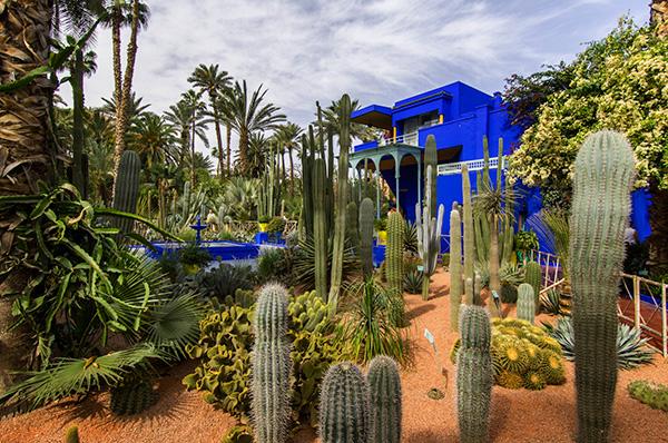 Maravilhas do mundo, jardins de sonho: Jardins de Majorelle – Marraquexe, Marrocos