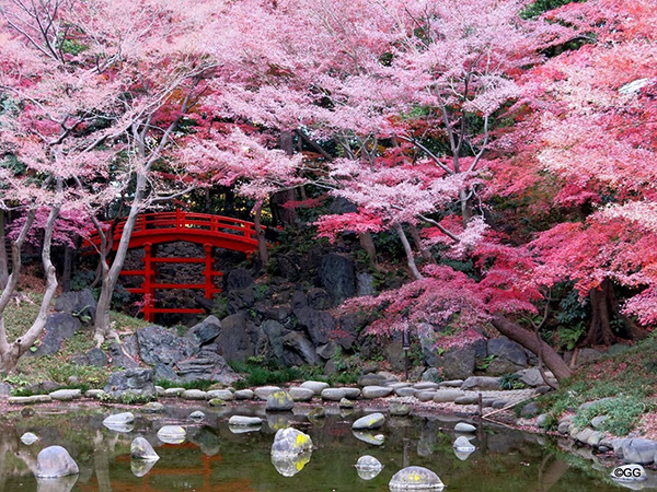 Maravilhas do mundo, jardins de sonho: Jardim de Koishikawa Korakuen – Tóquio, Japão