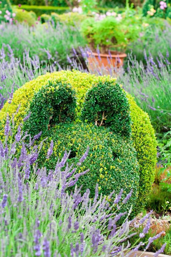 Arbustos com formas divertidas e surpreendentes - coelhinho
