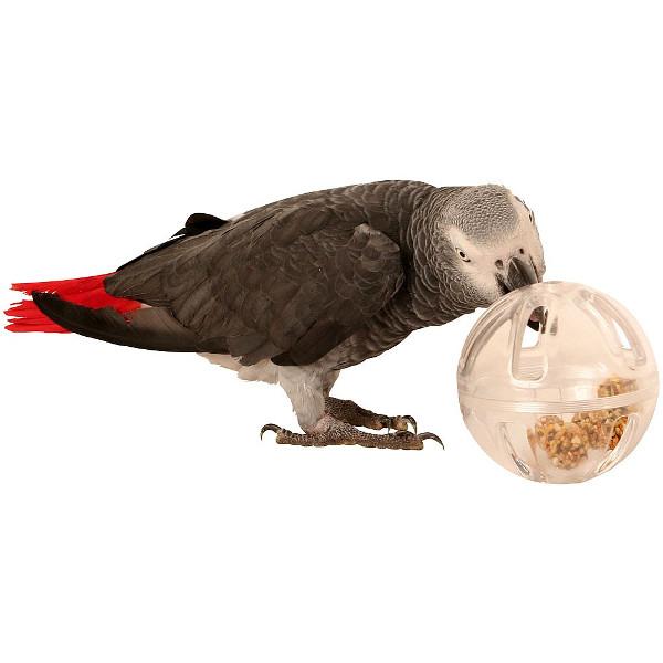Bebedouros para animais domésticos - comedouro para papagaios, araras e catatuas
