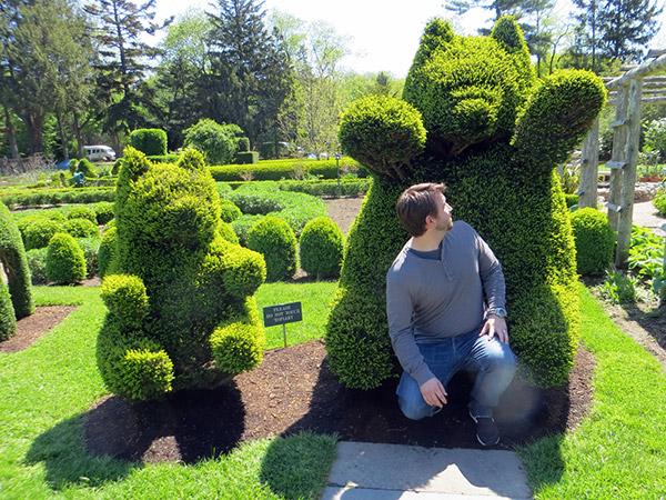 Arbustos com formas divertidas e surpreendentes - ursinhos de goma