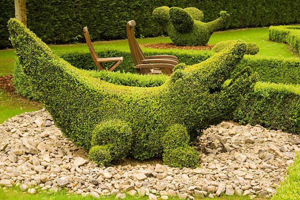 Arbustos com formas divertidas e surpreendentes - jacaré