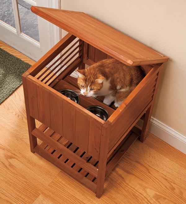 Bebedouros para animais domésticos - comedouro de sonho para gatos