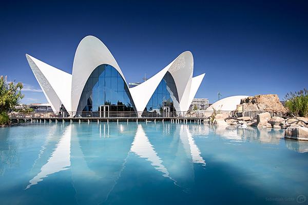 Aquários espectaculares - L'Oceanogràfic, Valência – Espanha
