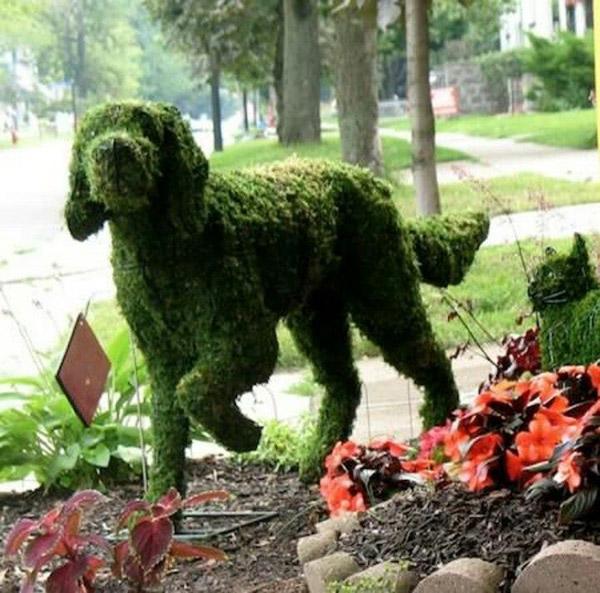 Arbustos com formas divertidas e surpreendentes - cãozinho