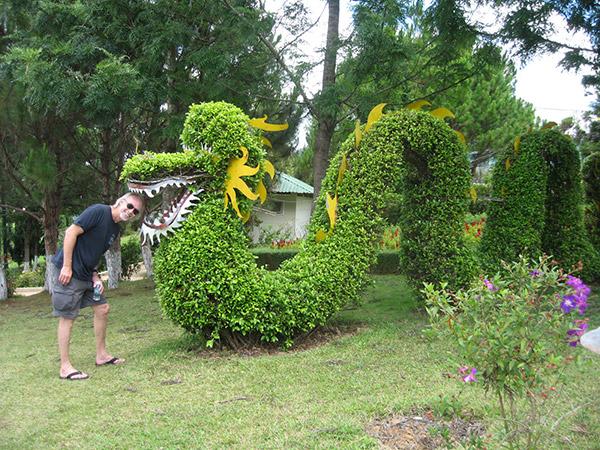 Arbustos com formas divertidas e surpreendentes - dragão