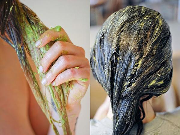 Benefícios do abacate - cuida do cabelo