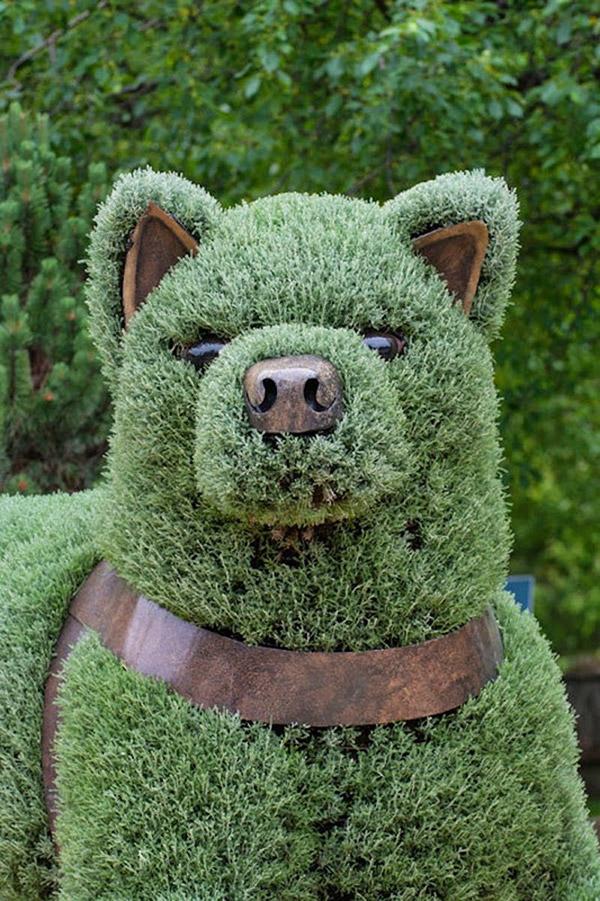 Arbustos com formas divertidas e surpreendentes - urso de peluche