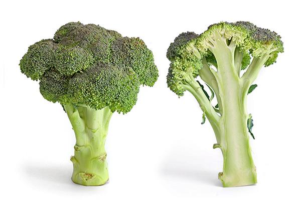 Benefícios dos brócolos - NADA SE DESPERDIÇA