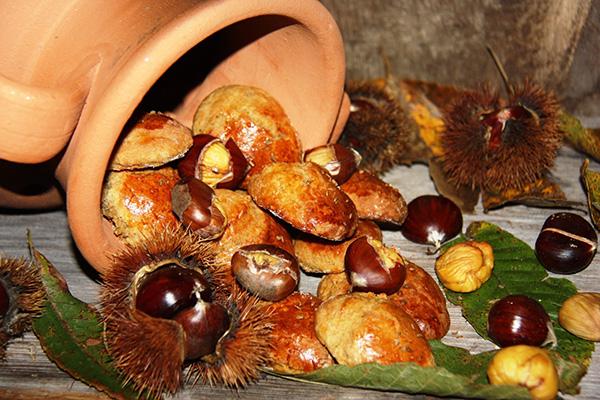 Boas razões para comer castanhas - MELHORAM O ASPECTO E SAÚDE DA NOSSA PELE