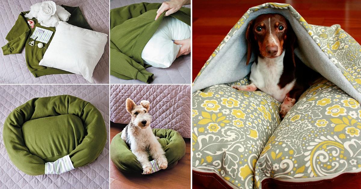 Camas para os seus animais de estimação – 5 ideias sem custos