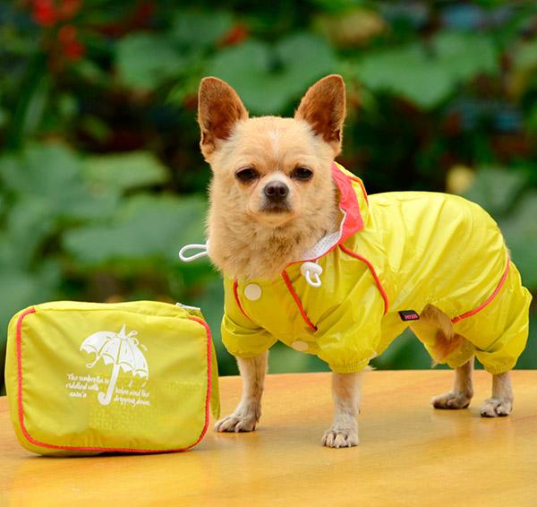 Capas para a chuva para o seu cão - impermeável