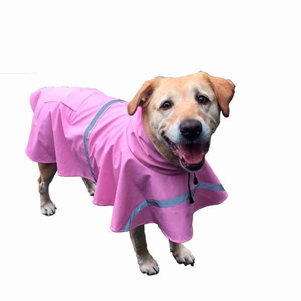 Capas para a chuva para o seu cão - lilás
