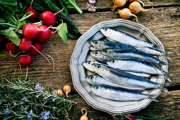 Dicas de nutrição - 5 peixes saudáveis e seguros - Sardinha