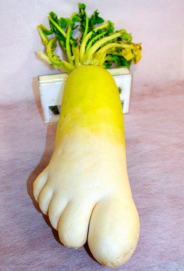 Alimentos que nasceram com formas surpreendentes - vegetal