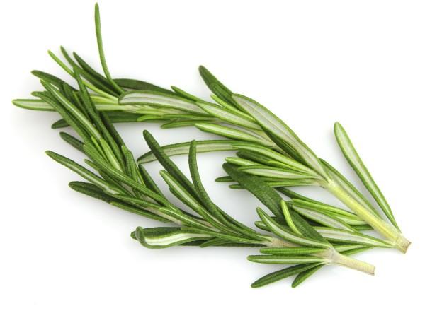 10 alimentos com propriedades afrodisíacas - Alecrim