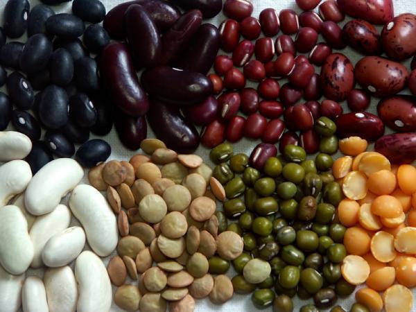 Os benefícios de cada tipo de feijão