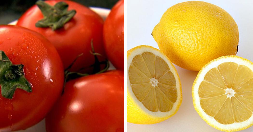 10 alimentos que não deve guardar no frigorífico