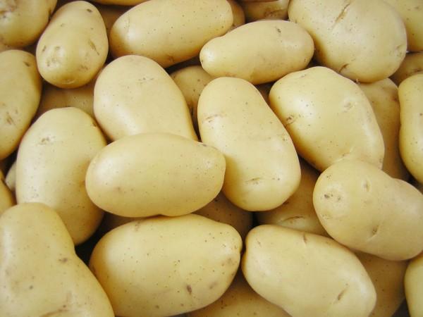 10 alimentos que não deve guardar no frigorífico - Guarde as batatas em saco de papel