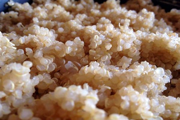 Quinoa, a proteína completa - 7 benefícios e receita - Protege das doenças cardiovasculares
