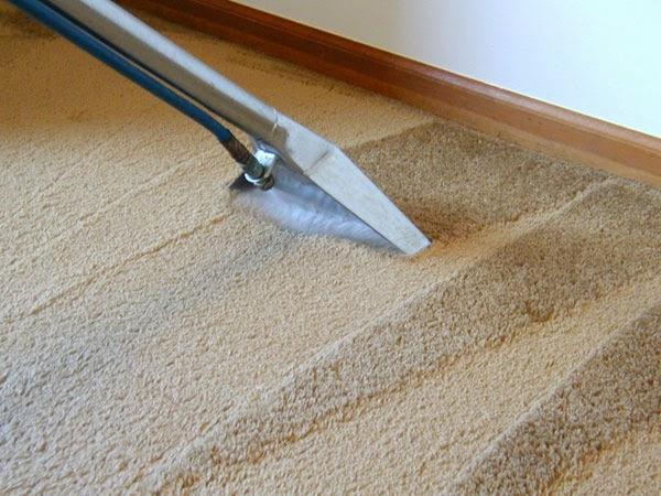 7 Maneiras evitar os ácaros em sua casa -Carpete