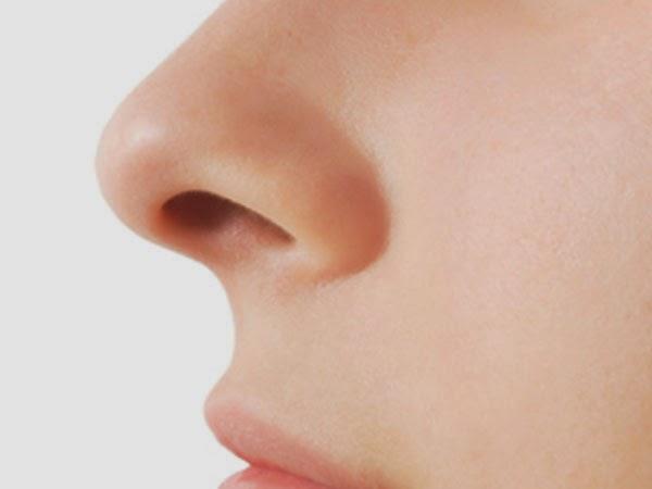7 alimentos que combatem as alergias da Primavera - Hortelã