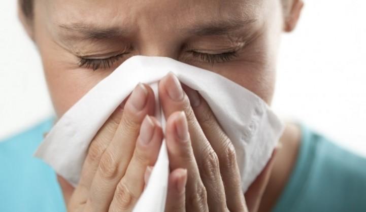 Benefícios das bagas goji - Reforçam o sistema imunitário