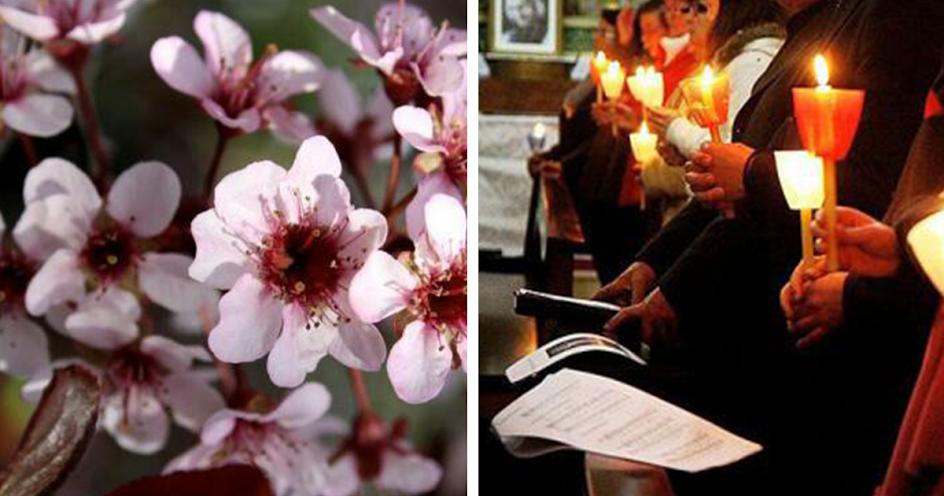 Semana Santa – 5 locais para visitar esta Páscoa