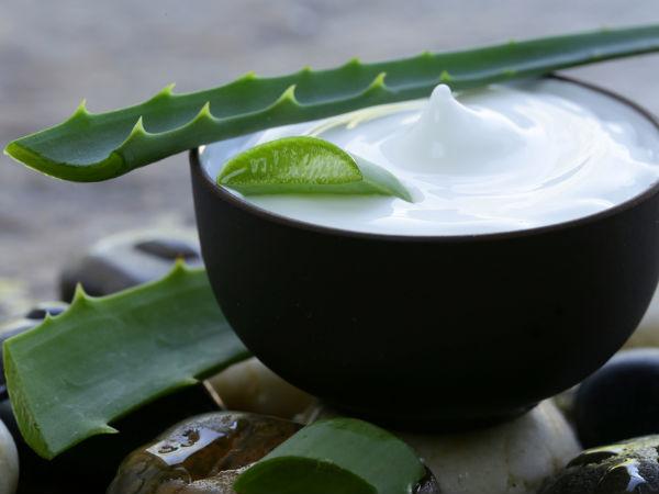 Dicas saudáveis: 10 Benefícios do Aloe Vera- Equilibra o PH do nosso sangue